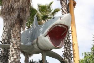 modello squalo spielberg