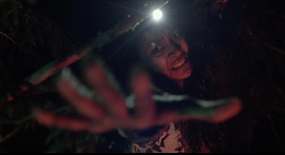 I boschi di Adam Wingard celano il terrore nel trailer di The Woods