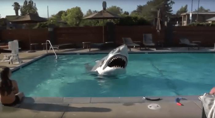 Un incredibile squalo animatronic infesta la piscina dell'Hilton Doubletree Hotel