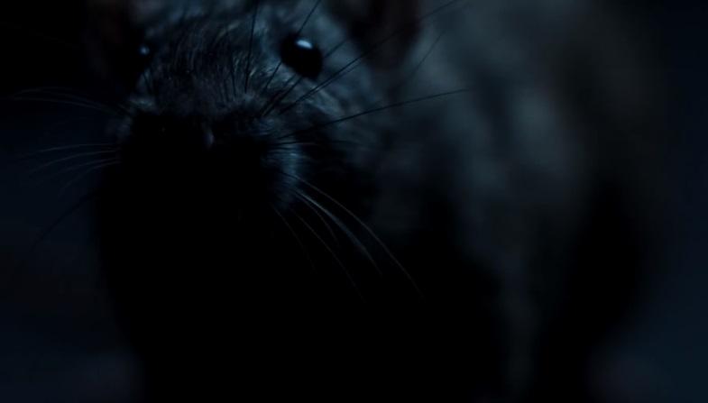 rats-spurlock