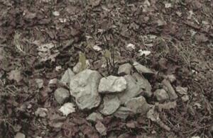 tumulo-blair