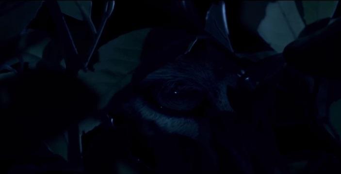 prey-maas-film