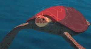 tartaruga-rossa-film