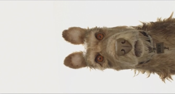 Wes Anderson presenta il suo nuovo film (su YouTube): Isle of Dog