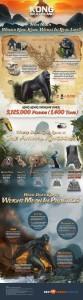 infografica king kong skull