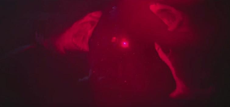 47 metri: data di uscita e trailer italiano per lo shark movie con Mandy Moore e Claire Holt