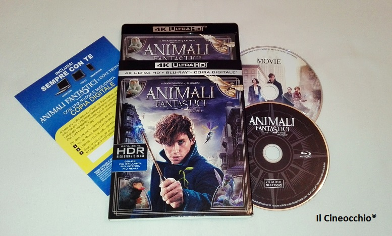 [recensione Blu-Ray 4K] Animali Fantastici e Dove Trovarli di David Yates