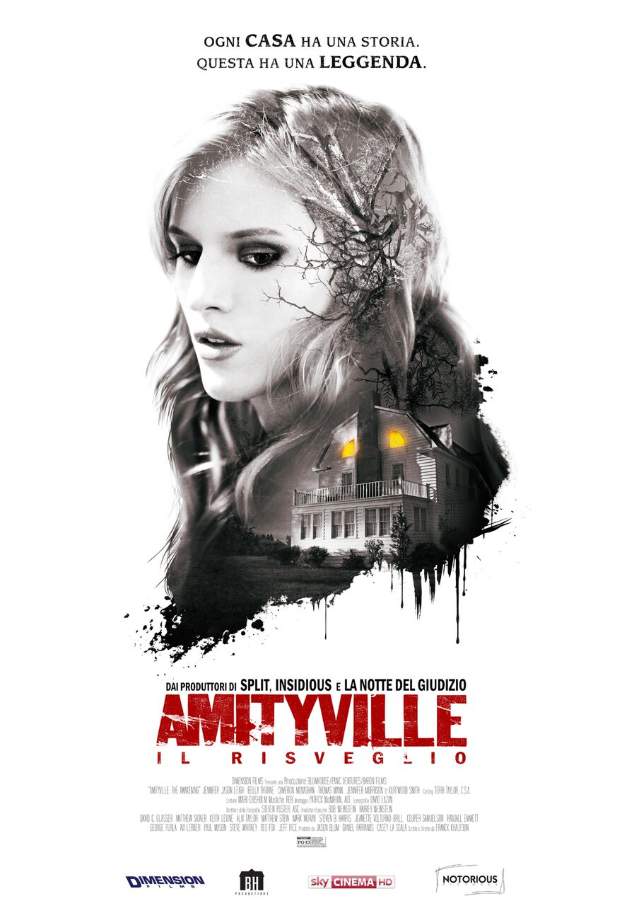 amityville risveglio poster