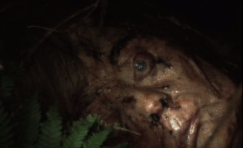 Un terrore invisibile si cela tra i boschi gelidi del trailer del found footage Cold Ground