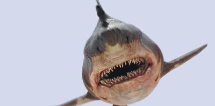 Uno squalo sputa acido e trasforma i bagnanti in zombie nel trailer di Toxic Shark