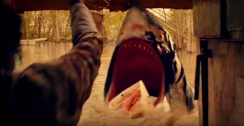 Trailer Park Shark porta un enorme squalo nelle paludi tra i bifolchi del Sud
