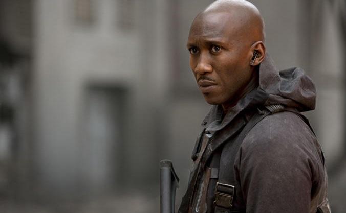 True Detective 3: svelati il regista e la sinossi della nuova stagione