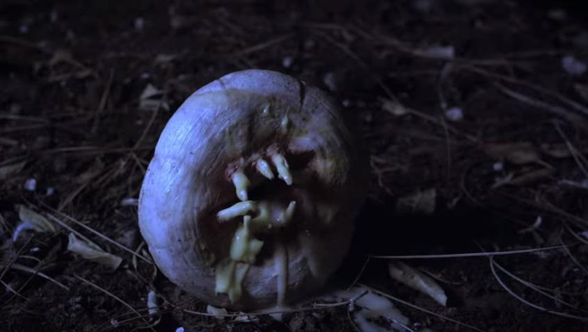 Ciambelle assassine e vendicative nel trailer di Attack of the Killer Donuts