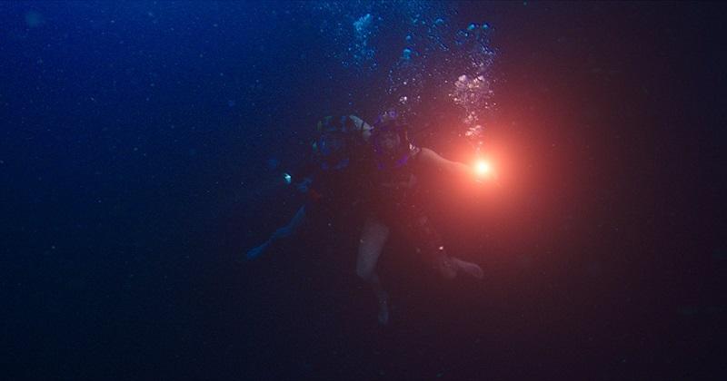 """Johannes Roberts: """"Immersioni in grotta per 48 Meters Down; sarà The Descent sott'acqua"""""""