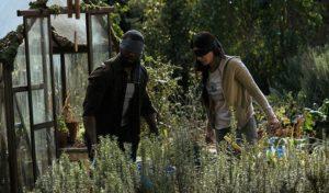 Sandra Bullock e Trevante Rhodes in Bird Box (2018)