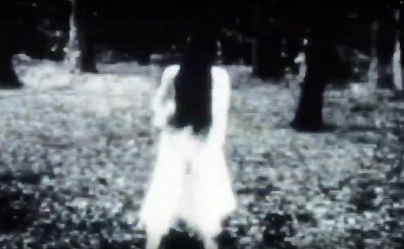 Sadako Hideo Nakata film 2019