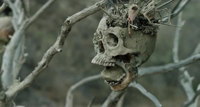 Bone Tomahawk (2015) film