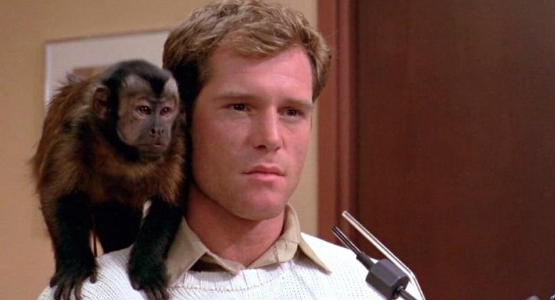 Jason Beghe and Boo in Monkey Shines (1988)