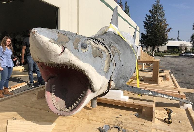 bruce lo squalo film