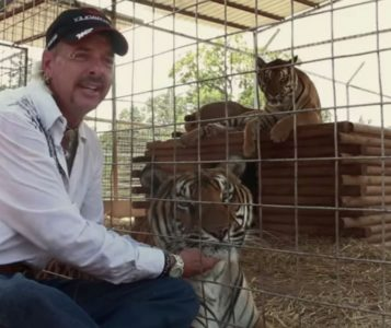 Joe Exotic in Tiger King Murder, Mayhem and Madness (2020) netflix