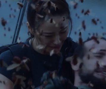 Killer Bee Invasion film 2020