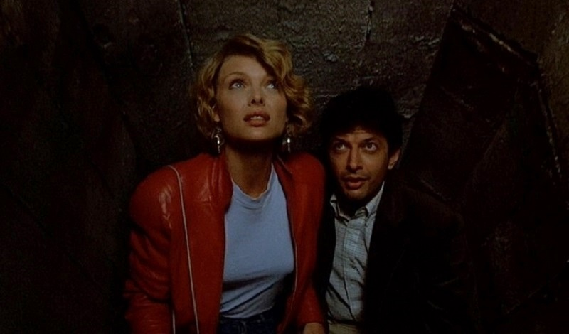 tutto in una notte film goldblum 1985
