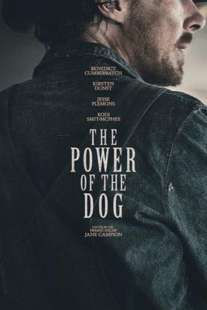 il potere del cane film 2021 poster