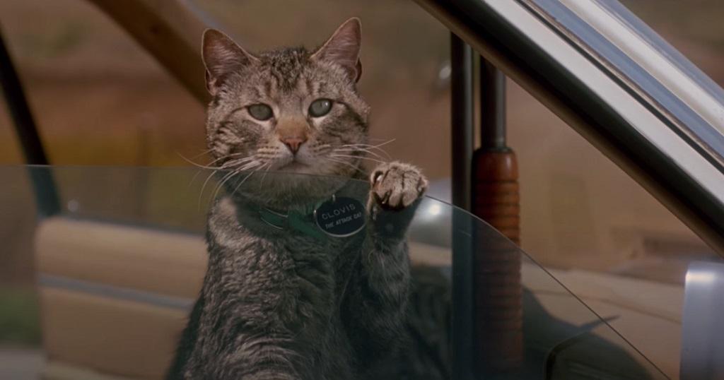 i sonnambuli film garris 1992